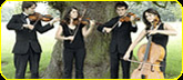 String Quartets & Instrumentalists available from Manchester's Unit One Entertainment - Tele 0161 788 8444